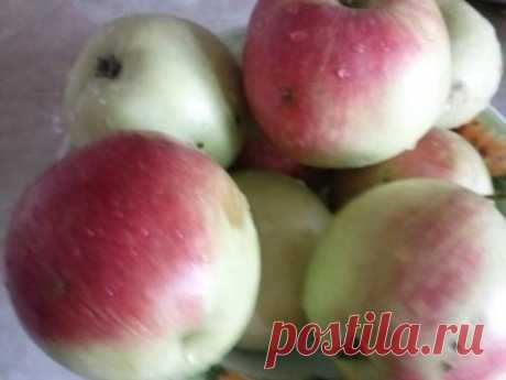 The recipe of apple puree - preservation - to Prepare quickly