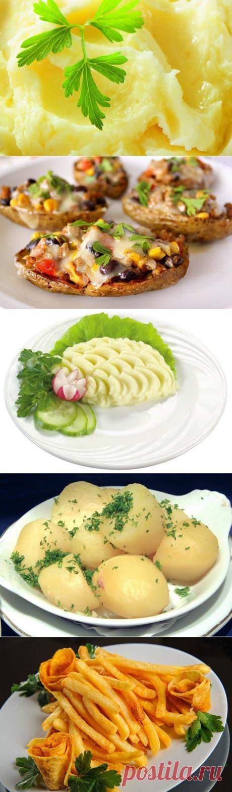 9 вкусных блюд из картофеля