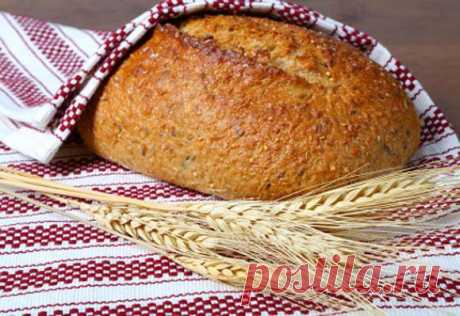 How to bake rye bread in house conditions - Culinary recipes from the Cheerful Giraffe