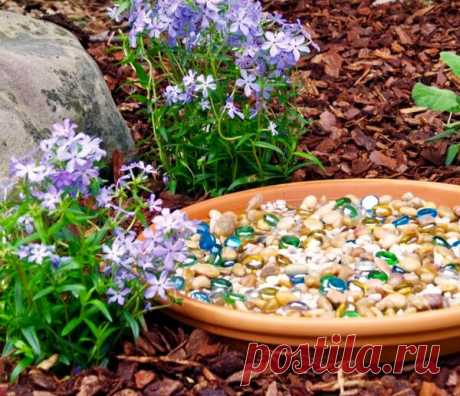 Зачем все ставят в саду емкость с камушками? Озерцо с камушками это не что иное как поилка для птиц, пчёл, шмелей и бабочек. А для птиц оно может служить бассейном, в жаркий день они с удовольствием будут там купаться. Можно использовать цветные камушки для декора комнатных растений Вы спросите, зачем это нужно? Конечно, взрослым это...