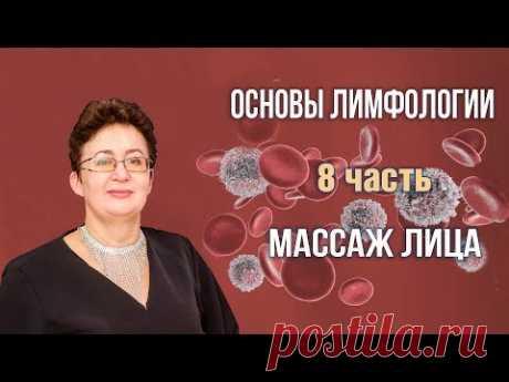 Основы лимфологии | Массаж лица | Шишова Ольга | часть 8