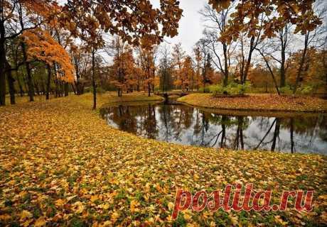 У каждого — своя Осень… и у всех, с легким привкусом грусти…