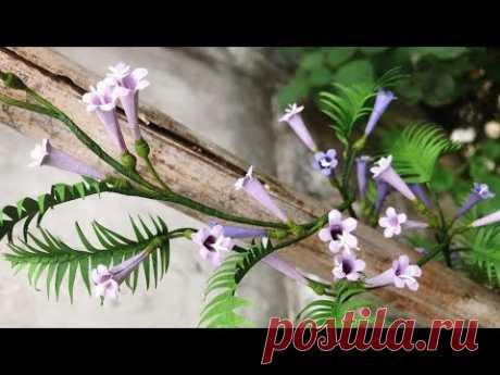 ABC TV   How To Make Vine Paper Flower   Flower Die Cuts - Craft Tutorial