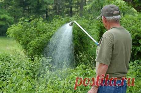 (+1) тема - Про полив огорода | 6 соток