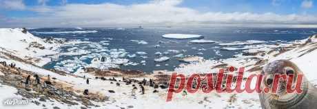 Путешествие AirPano к берегам Антарктиды: rccam