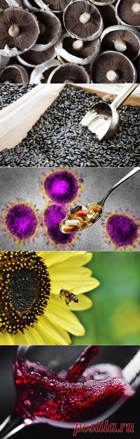 5 лучших минералов и витаминов для укрепления вашего иммунитета