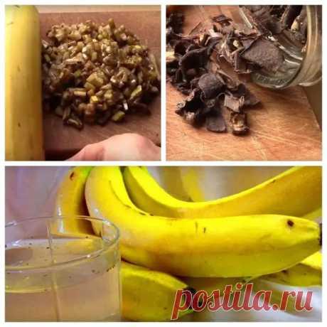 Удобрение из банановой кожуры для комнатных растений - Цветочки - медиаплатформа МирТесен