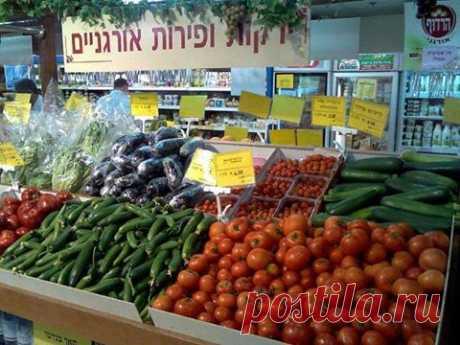 (6) Еврейская (кошерная) международная кухня.