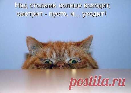 Надежда Надежда - Тверь, Тверская обл., Россия на Мой Мир@Mail.ru
