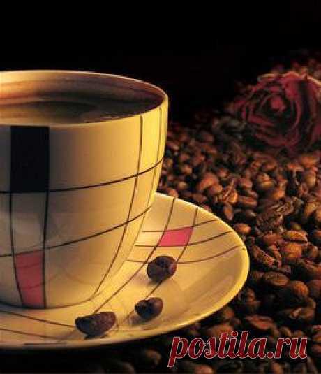 Как правильно выбрать кофе Продажа свежеобжаренного кофе, кофе в зернах оптом Аромат кофе, чаще всего, вызывает положительные эмоции. У многих из нас он ассоциируется с началом нового дня, полного надежд, солнечным утром, домашним уютом, романтическим свиданием, и прочим, и прочим. Кофе пробуждает организм и даёт заряд бодрости. Однако, как правильно выбрать кофейные зёрна, знают лишь единицы.