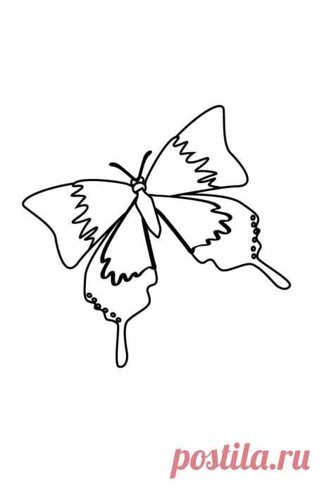 Бабочка весной
