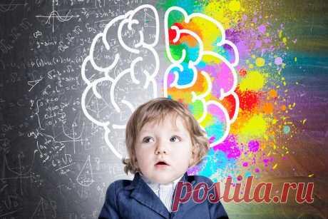 Как повысить успеваемость ребенка и «натренировать» мозг: советы нейропсихолога - Летидор