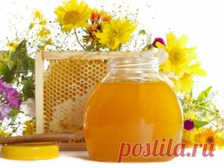 Лечение печени мёдом  Здоровая печень – залог здоровья человека в целом. Именно на печень ложатся все нагрузки по очищению организма от токсинов, попадающих в кровь с едой, с напитками и вдыхаемым воздухом. И даже если опустить такие её функции, как кроветворение и выработка желчи для переваривания пищи, то у печени остается еще множество «задач» по поддержанию организма в чистоте и «рабочем» состоянии. Вот почему печень нужно беречь с юных лет.  Правда, в молодости об это...