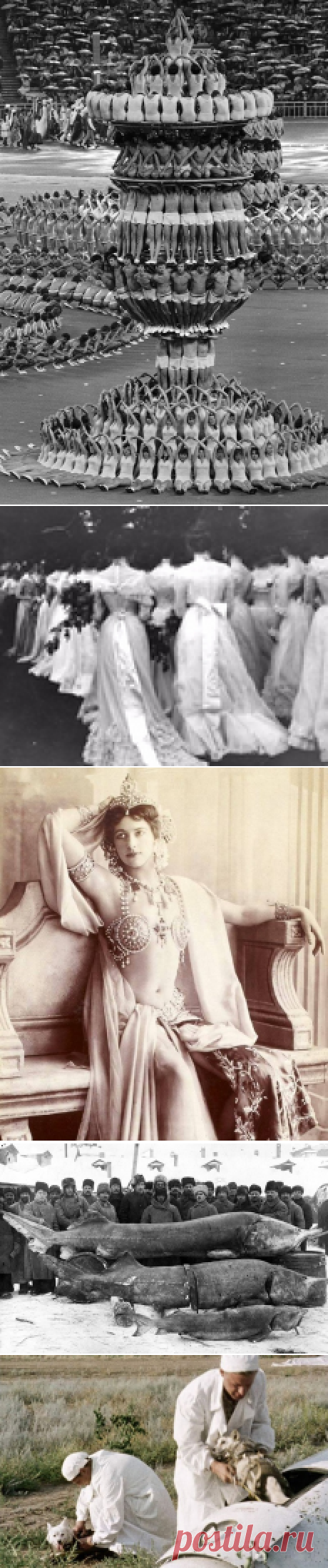 Исторические фото, которые открывают прошлое с новой стороны