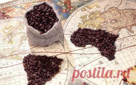 Учимся разбираться в кофе: какой сорт выбрать