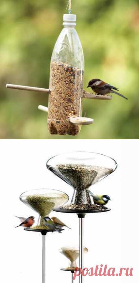 Полезные каникулы: мастерим кормушки для птиц из подручных материалов. Томский Обзор