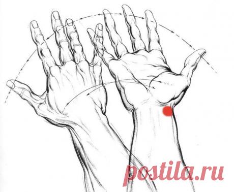 Воздействую на точку Чингисхана по 2 минуты в день при нарушениях в желудочно-кишечном тракте | health & beauty | Яндекс Дзен