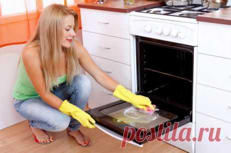 Способы очистки духовки: 11 полезных подсказок — Полезные советы