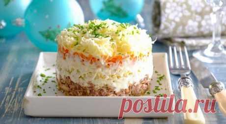 Салат мимоза — лучшие классические рецепты салата мимоза с консервами и сыром - Женские советы