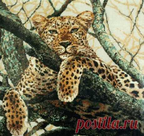 """""""Леопард""""  РИОЛИС 937"""