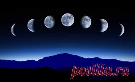 Лунный гороскоп стрижек 2016 год. Календарь стрижек на август, сентябрь, октябрь, ноябрь, декабрь, январь, февраль, март, апрель, май, июнь, июль