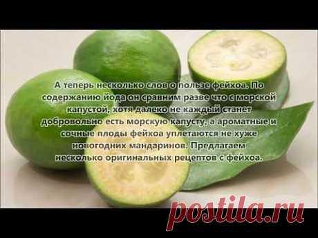 Рецепты из ягод. Блюда из фейхоа - Нужный запас йода получаем из фейхоа
