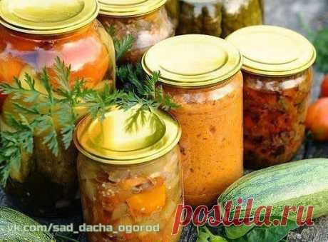 13 овощных САЛАТОВ на зиму