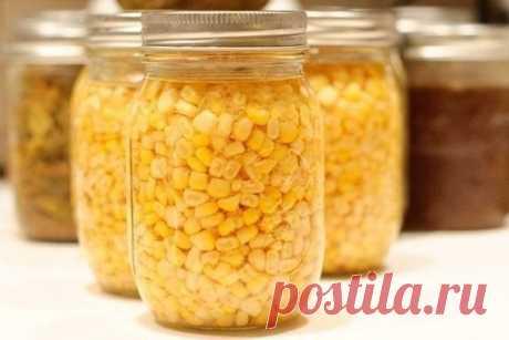 """Сахарная консервированная кукуруза на зиму, своими руками. Вкуснее покупной.  Ингредиенты для """"Сахарная консервированная кукуруза"""": Кукуруза (чем больше, тем лучше) Соль (на 1 баночку 0,5 л) — 1 ч. л. Сахар (на 1 баночку 0,5 л) — 2 ч. л. Уксус (на 1 баночку 0,5 л) — 1 ст. л. Для консервации подходят сахарные сорта кукурузы (у обыкновенной вкус не тот) в стадии молочной зрелости (это, когда она вкусная кушать).  Початки кукурузы почистить и сложить плотно в кастрюлю. Залить водой (чтобы были пок"""