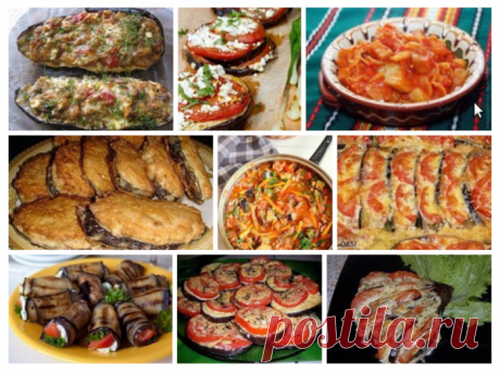 Подборка рецептов блюд с баклажанами