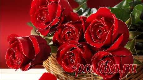 Все цветы для тебя...