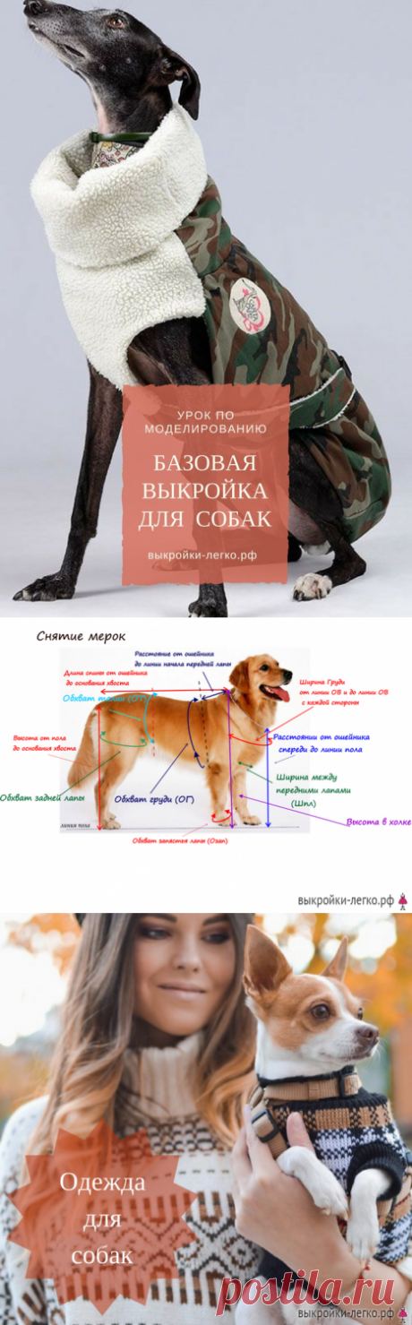Basic pattern for dogs | Ready patterns and lessons of construction on Выкройки-Легко.рф