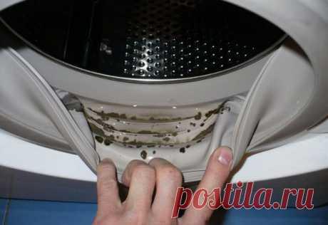 Как навсегда избавиться от неприятного запаха в стиральной машине?