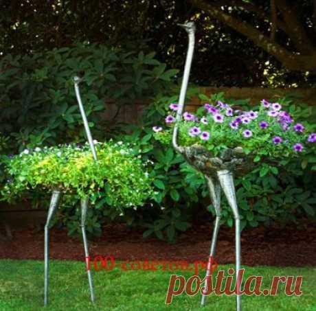 Цветочный страус или клумба для вьющихся растений | Поделки своими руками для авто, дачи и дома