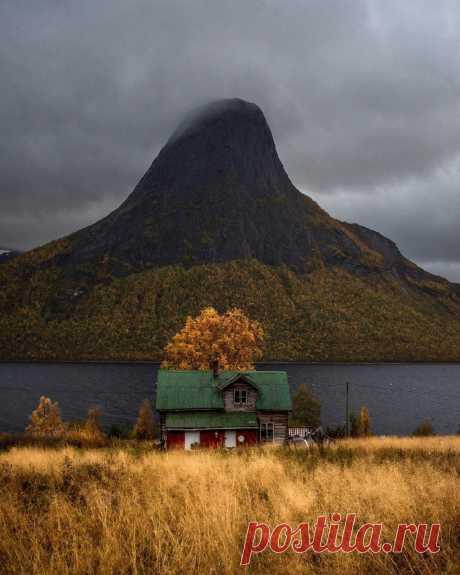 Эфьорд, Норвегия 🍂