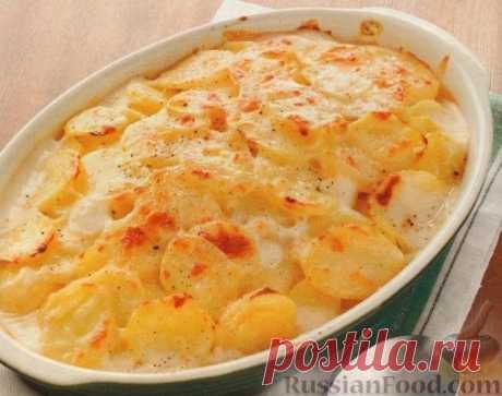 Картофельная запеканка - 30 рецептов с фото