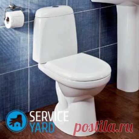 Средство для унитаза - освежитель. Как сделать его своими руками? | ServiceYard-уют вашего дома в Ваших руках.