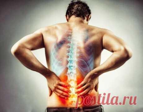 Боль в спине уйдёт через неделю. Выполняйте 5 простых упражнений | Фитнес леди | Яндекс Дзен