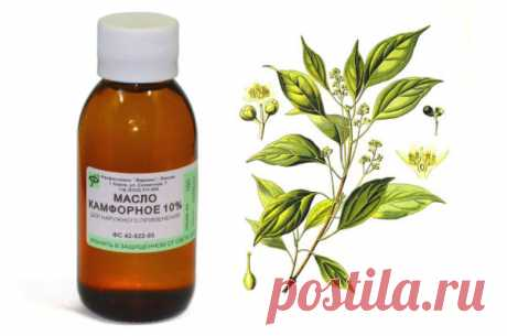 Whether it is possible to use camphor face oil from wrinkles, reviews of application and ways of drawing