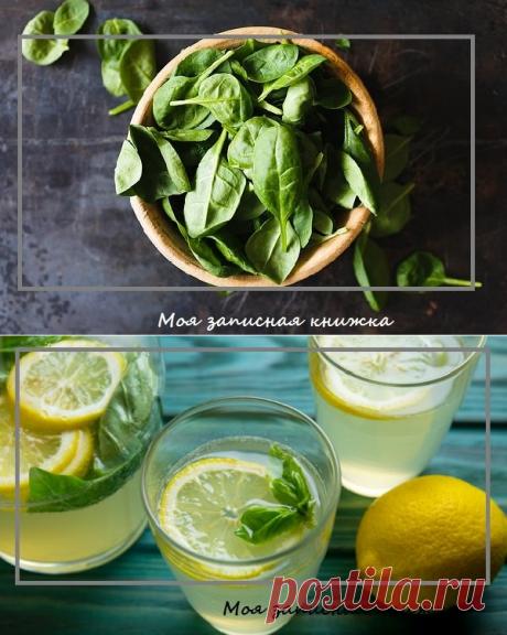 Лимонад из базилика: натуральный напиток, который поможет укрепить здоровье | моя записная книжка | Яндекс Дзен