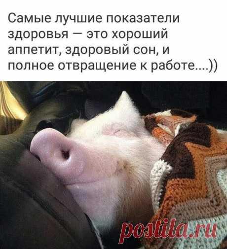 ТИХИЙ ОМУТ +18 – Google+