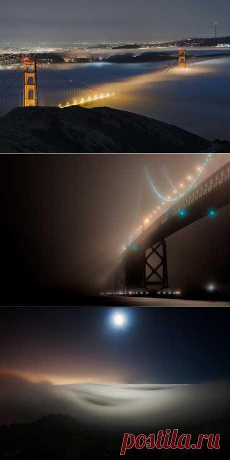 Сан-Франциско в тумане : НОВОСТИ В ФОТОГРАФИЯХ