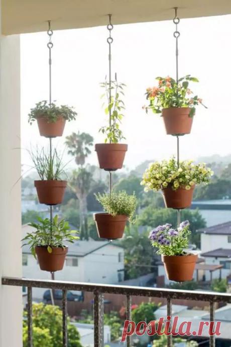 Отличная идея для комфортного размещения комнатных цветов на затемненных окнах в квартире! Идеи для воплощения!   Юлия Жданова   Яндекс Дзен
