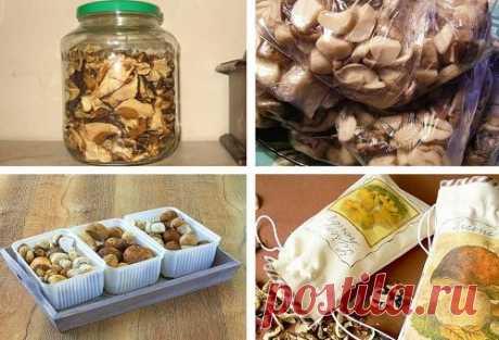 Как хранить сушеные грибы в домашних условиях: условия и срок хранения