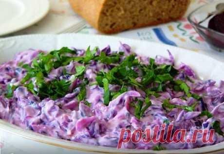 Салаты из краснокочанной капусты – 15 вкусных рецептов (фото)