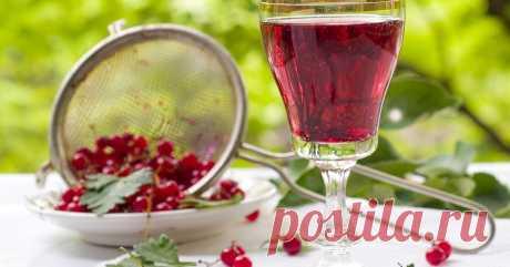 Вино и настойки из смородины – как приготовить в домашних условиях Лучший способ сохранить урожай смородины – приготовить из ягод домашнее вино или наливку!