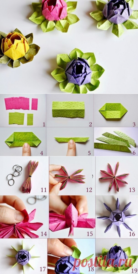 Origami from paper. Beautiful water-lily. It is possible to make it with own hands from beautiful color paper.