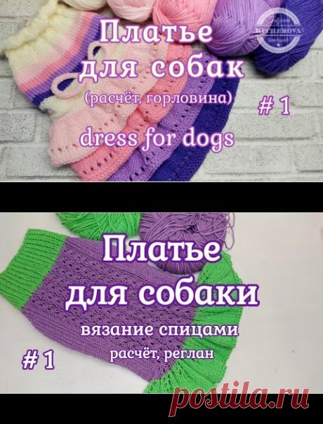 Платье для собаки спицами, Часть 1, расчет, реглан - YouTube
