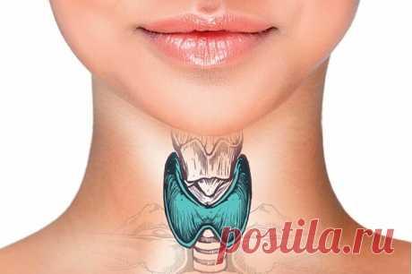 Как самостоятельно проверить щитовидную железу перед зеркалом с водой | Здоровье проявляет красоту | Яндекс Дзен