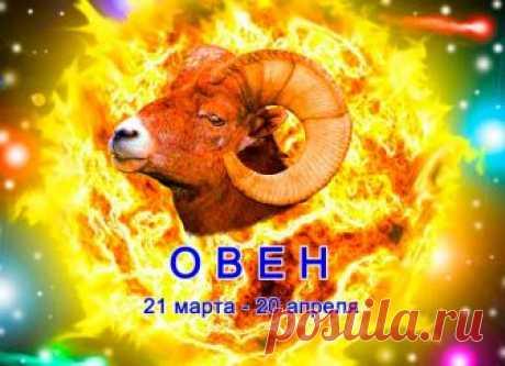 САМЫЙ ТОЧНЫЙ гороскоп для Овна на 2019 год – общий, любовный, финансовый, здоровья и восточный астропрогноз