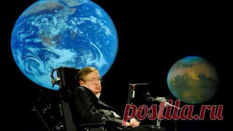 Хокинг рассказал, что считает самым удивительным открытием - Новости Общества - Новости Mail.Ru